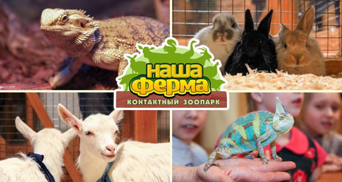 -48% на билет в зоопарк «Наша ферма»