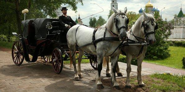 -50% на экскурсию в конном экипаже