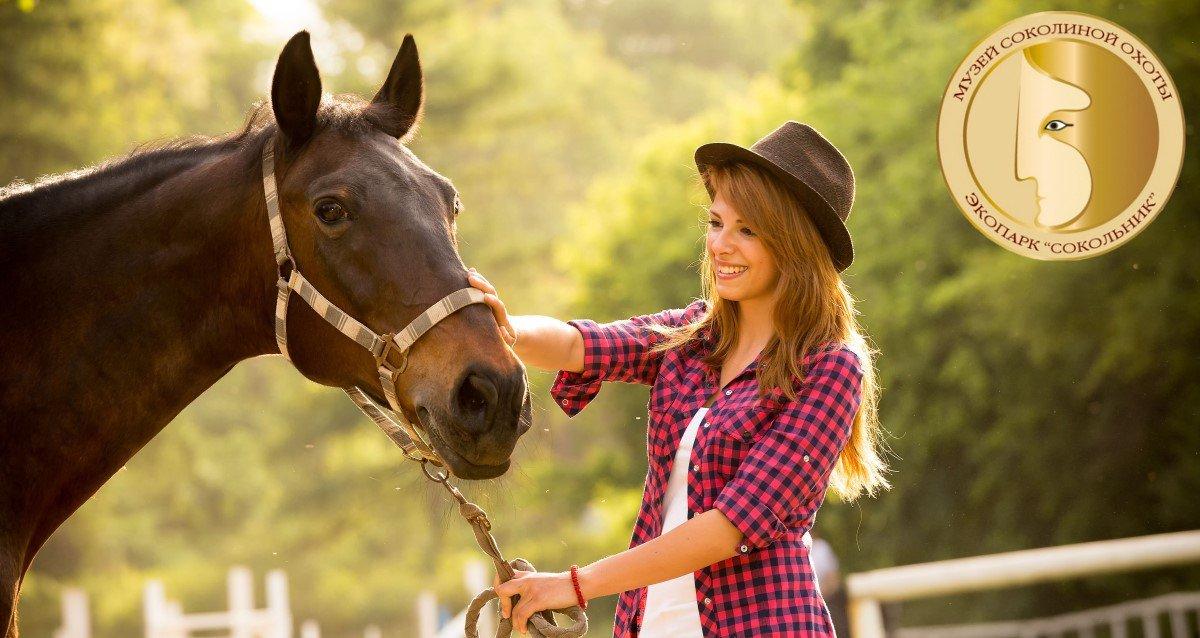 -71% на конные прогулки в экопарке «Сокольник»
