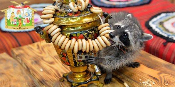 -50% от контактного зоопарка «Рога и Копыта»