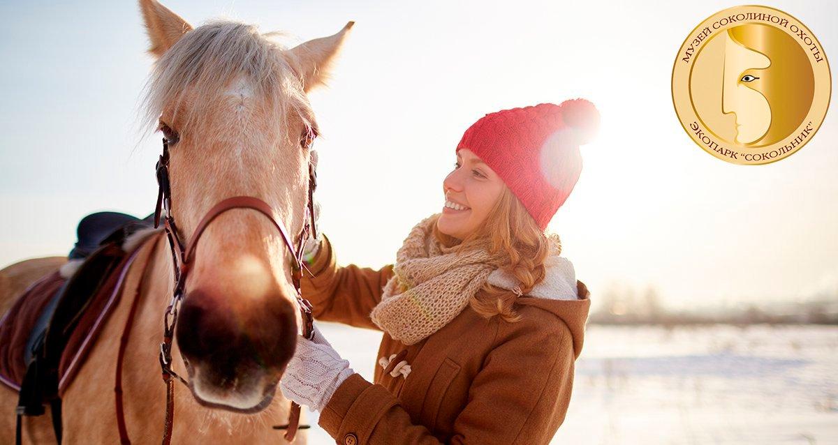 Скидки до 71% на конную прогулку + чаепитие