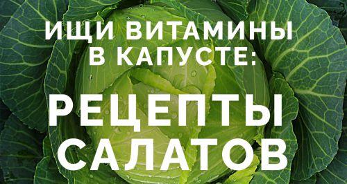 Ищи витамины в капусте: рецепты салатов
