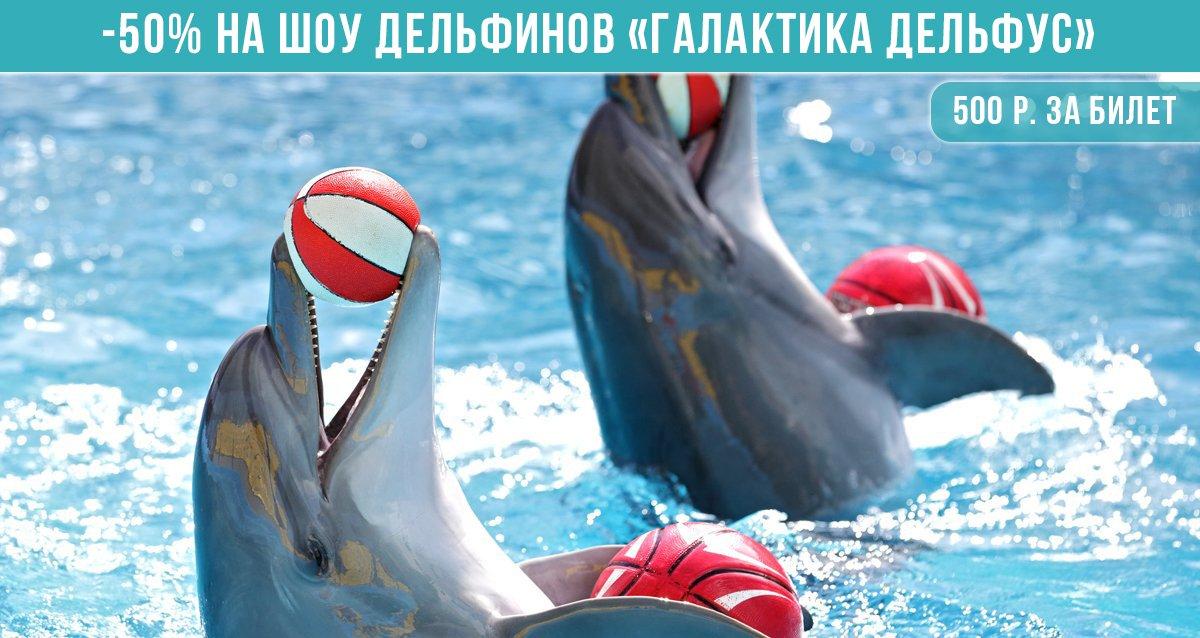 Скидка 50% на шоу дельфинов «Галактика Дельфус»