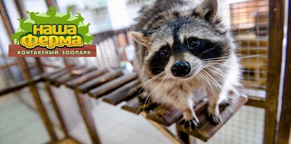 Скидка 50% на билет в контактный зоопарк