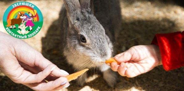 Скидка 40% на посещение контактного зоопарка «Зверюшки»