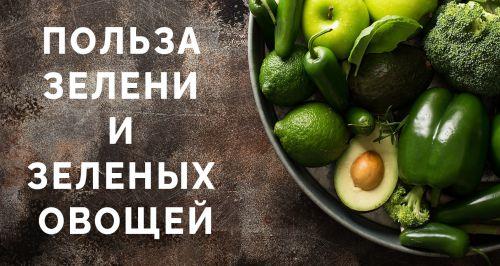 Польза зелени и зеленых овощей