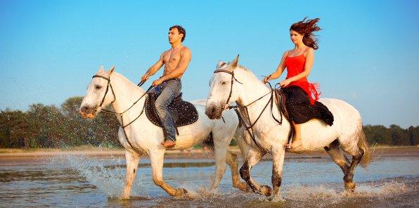 Скидки до 50% на конные прогулки по живописным местам