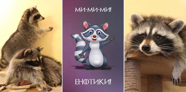 Скидки до 50% в доме енота в центре Санкт-Петербурга