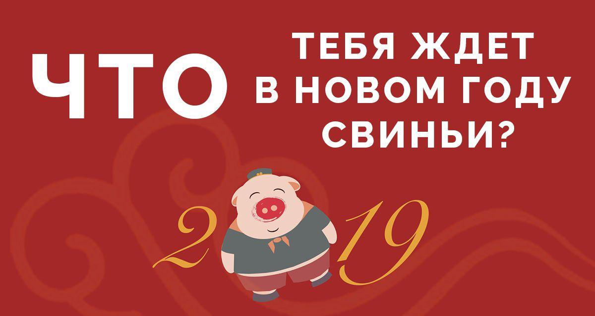 Что тебя ждет в Новом году Свиньи 2019?