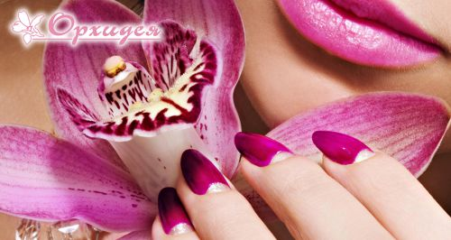 Скидки до 60% на ногтевой сервис в салоне «Орхидея»