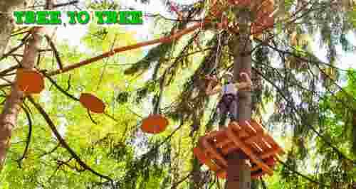 Скидки до 56% от веревочного парка TreeToTree