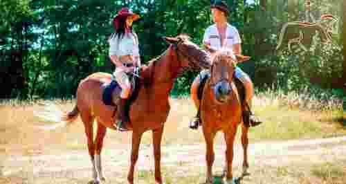 Скидки до 70% на конные прогулки за городом