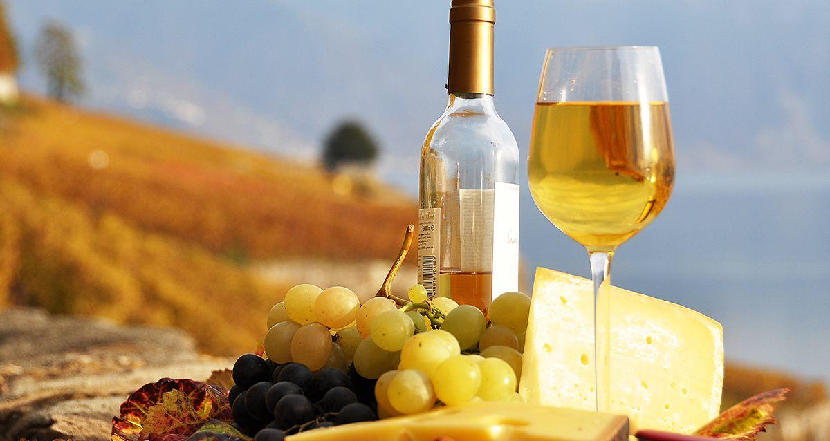 Какой сыр подобрать к вину: топ-5 сочетаний