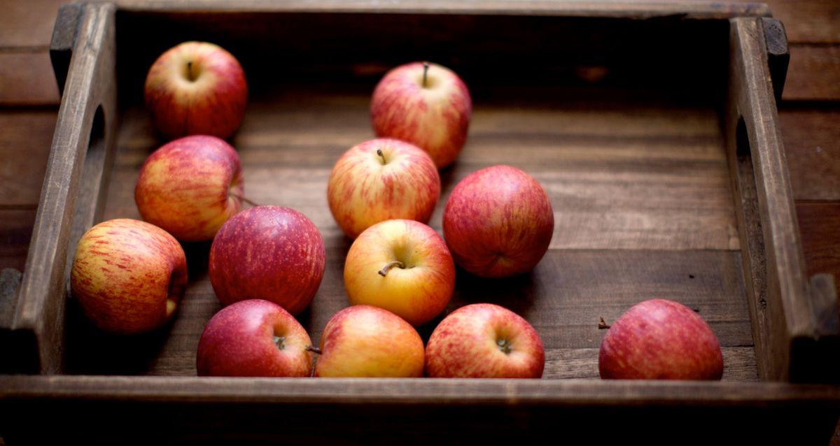 Яблочная пора: почему стоит полюбить яблоки