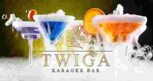 Скидка 50% на меню и напитки в караоке-баре TWIGA