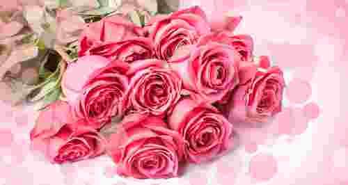 Скидки до 62% на букеты роз от «Фабрики цветов»