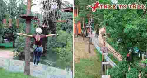 Скидки до 50% на билеты в веревочный парк «TreeToTree Озерки»