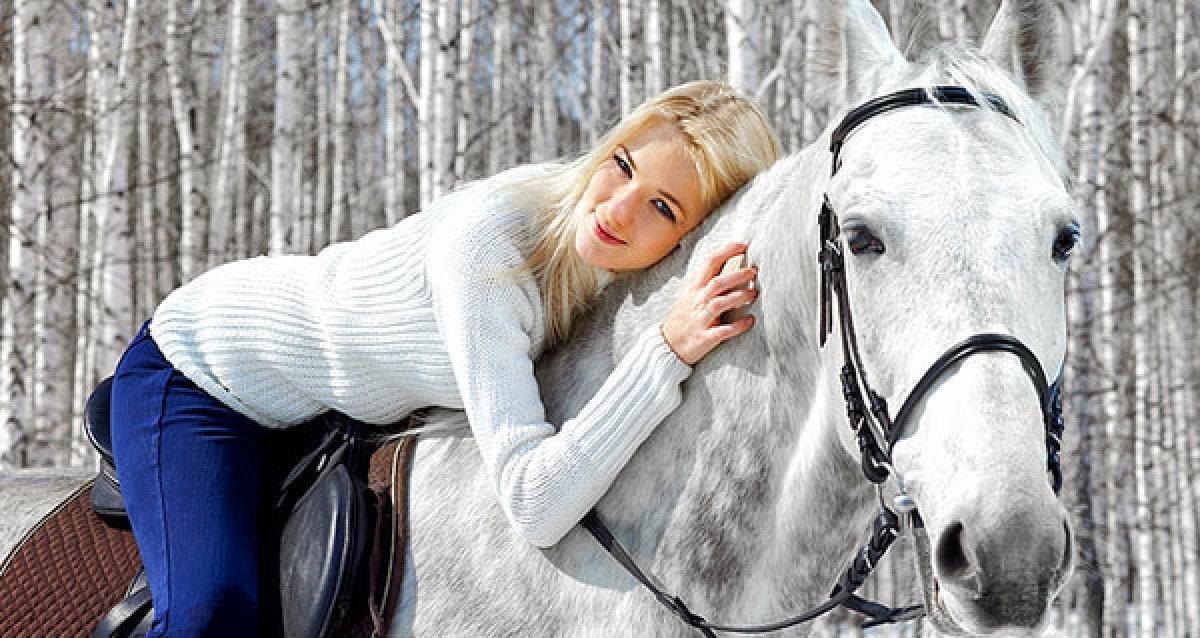 Ах вы, кони мои, кони!