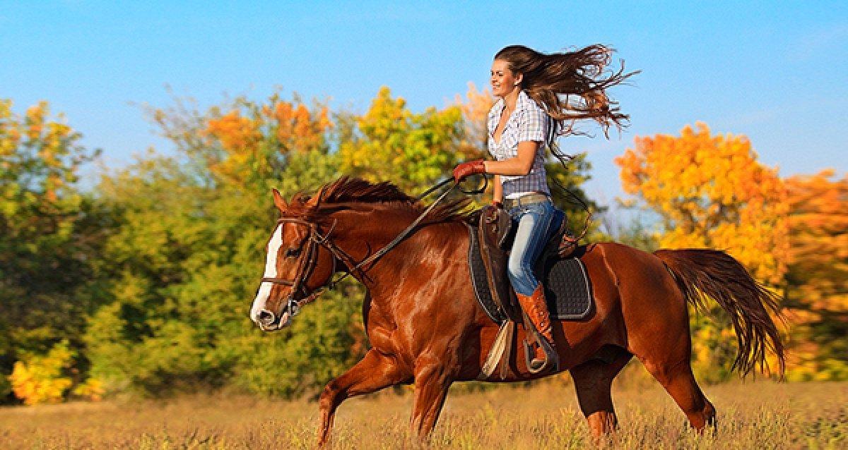Сделайте прогулку интереснее! От 1200р. за конную прогулку, прогулку на двоих в конном экипаже и чаепитие!