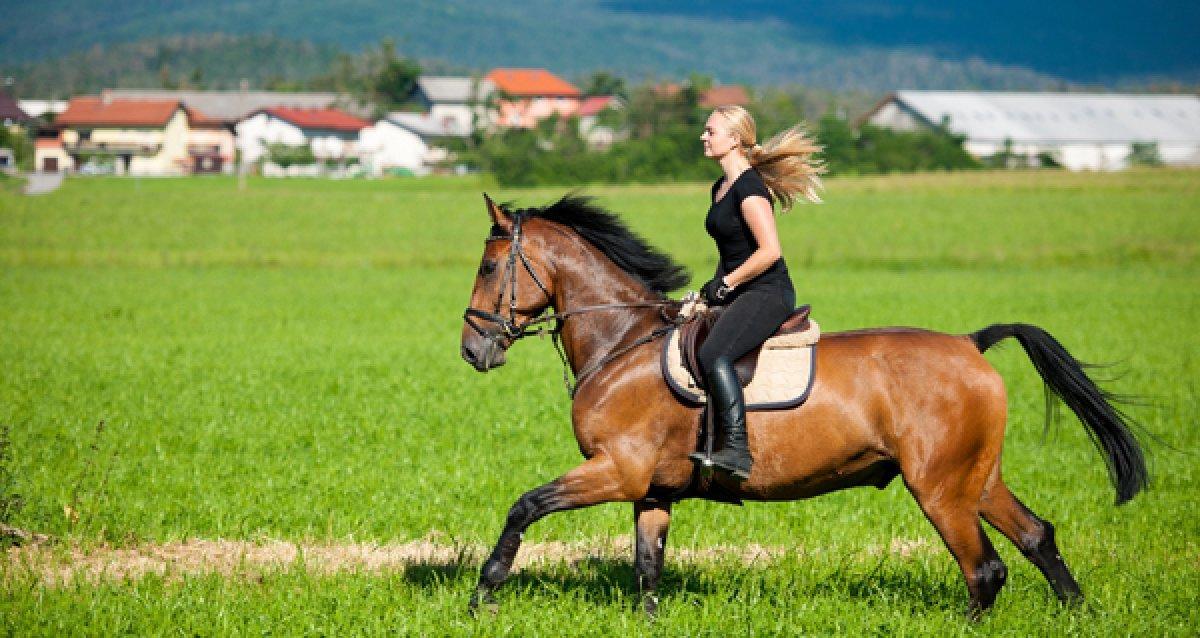 Путешествие в дворянскую эпоху в 38 км от МКАД! 1500 р. за конную программу или прогулку в экипаже, 9990 р. за прогулку в карете